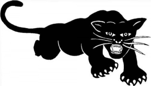 Logo de Black Panthers