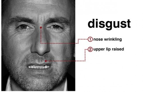 microexpressions-disgust-lie-to-me