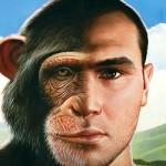 Human Monkey